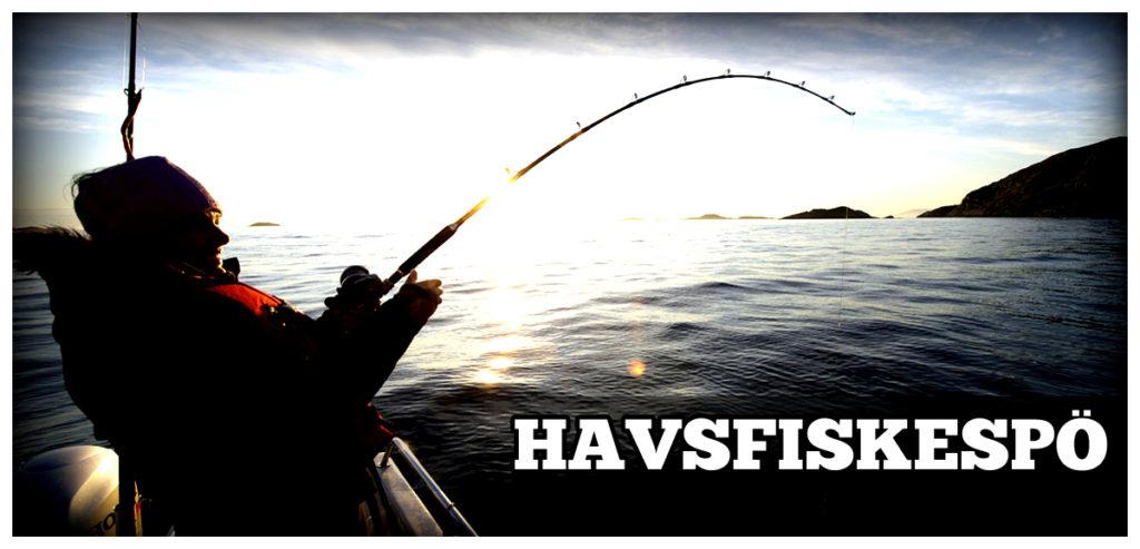 Havsfiskespö - Fiskespö