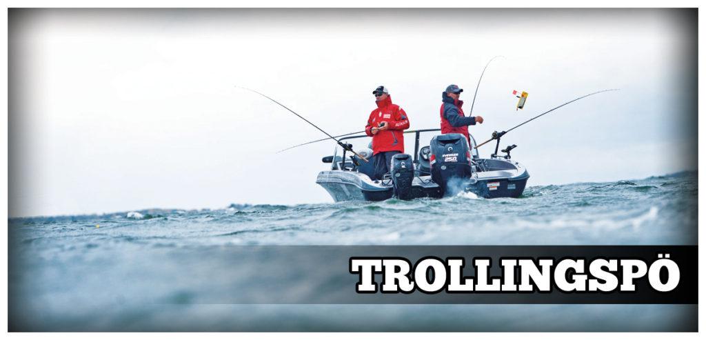 Trollingspö - Bild