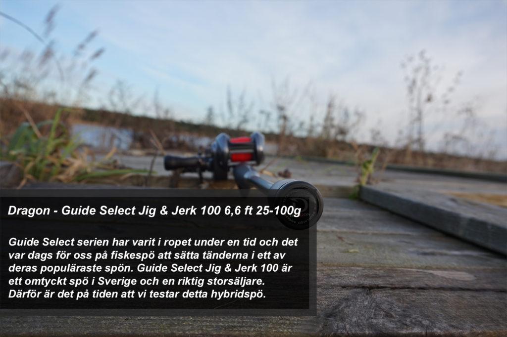 Dragon Guide Select Jig & Jerk 100 6,6 ft 25-100g