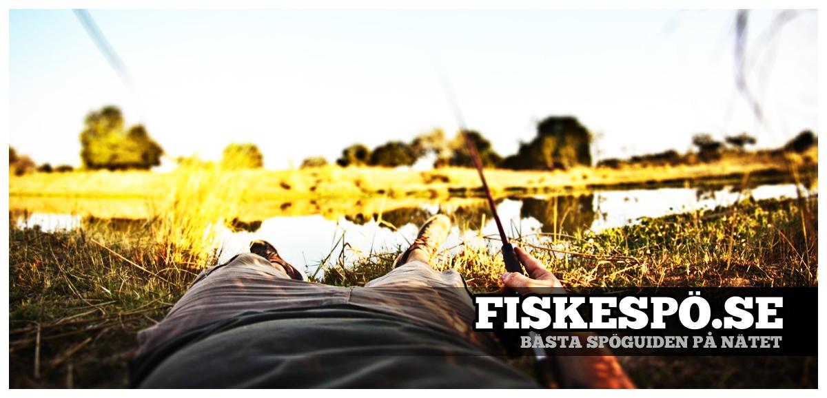 Fiskespö - Sveriges bästa fiskespöguide