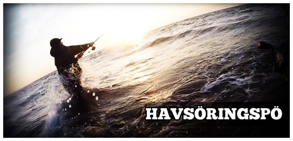 Haspelspö havsöring - Bild